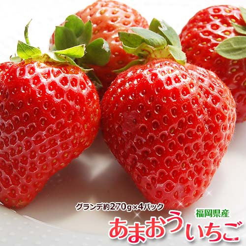 いちご イチゴ 福岡県産 あまおう G(グランデ) 約270g×4P 送料無料