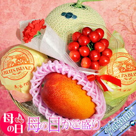 母の日 ギフト 国産 フルーツ カゴ盛り プラチナ 4種5品 ※カーネーション(造花)・メッセージカード付き 送料無料