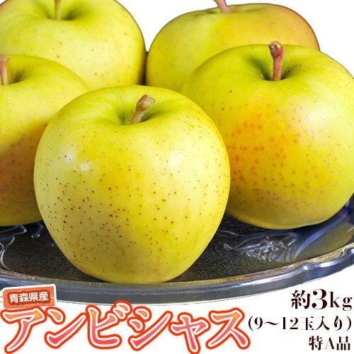 りんご 青森県産 「アンビシャス」約3kg(9〜12玉)特A品 送料無料
