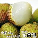 ライチ 台湾産 生ライチ 玉荷包 約1kg 送料無料(40〜50個程度) ※冷蔵