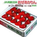 《送料無料》群馬県産 JA利根沼田 おぜあかりん (12〜15粒) 約500g ※冷蔵 frt ☆