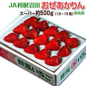 いちご イチゴ 苺 群馬県産 JA利根沼田 おぜあかりん (12〜15粒) 約500g 送料無料 ※冷蔵
