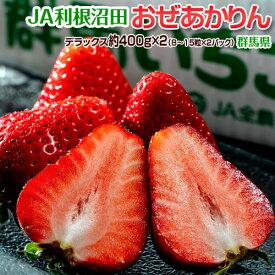 いちご イチゴ 苺 群馬県産 JA利根沼田 おぜあかりん (8〜15粒) 約400g×2 送料無料 ※冷蔵