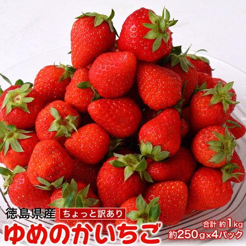 訳あり いちご イチゴ 徳島県産 『ちょっと訳あり 山盛りゆめのかいちご』ちいさめ 約250g×4パック 合計約1kg 冷蔵 送料無料