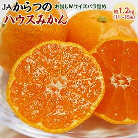 みかん 佐賀県産 JAからつのハウスみかん Mサイズ 約1.2kg(11〜15玉)送料無料