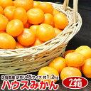 柑橘 みかん JAからつ 訳有 超小玉 4S 約1.2キロ×2箱 合計2.4キロ 送料無料