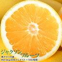 柑橘 ジャクソンフルーツ 南アフリカ産 約2.5kg (目安として12〜18玉入り) グレープフルーツ 送料無料