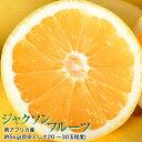 柑橘 ジャクソンフルーツ 南アフリカ産 約5kg(目安として20〜30個程度) グレープフルーツ 送料無料