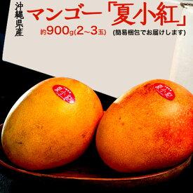 ギフト 内祝い 贈り物 沖縄県産 マンゴー 夏小紅 2〜3玉 約900g 送料無料