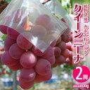 ぶどう 葡萄 ブドウ 長野県産 赤ぶどう クイーンニーナ 2房 合計約800g 送料無料