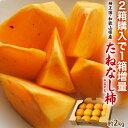 《送料無料》和歌山産たねなし柿(中谷早生)12個入り約2kgfrt〇