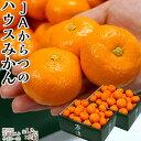 柑橘みかんJAからつ小玉みかん2〜3Sサイズ約1.2キロ×2箱化粧箱送料無料