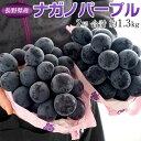 送料無料長野県産超特大ナガノパープル2房合計約1.3kg※常温または冷蔵