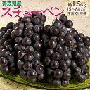 青森県産 黒ぶどう スチューベン 約1.5kg 5〜8房 送料無料