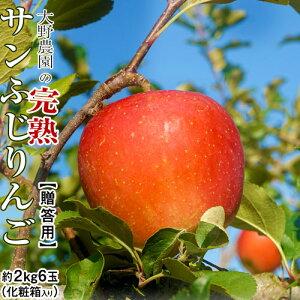 りんご 林檎 リンゴ 大野農園 完熟サンふじりんご 約2kg 6玉 福島県石川町産 送料無料 常温 産地直送 お歳暮 ギフト 贈り物