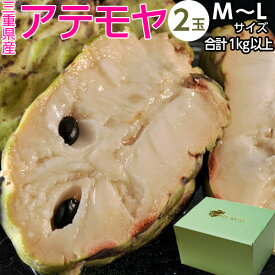 アテモヤ 三重県産2玉 M〜Lサイズ 合計1kg以上 化粧箱入 送料無料