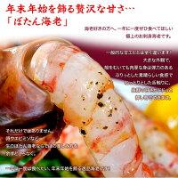 《送料無料》ロシア産「ぼたん海老」特大2Lメス限定500g(5〜7尾)※冷凍sea☆