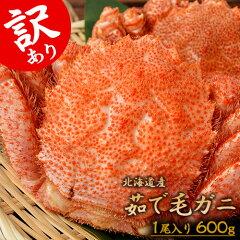 北海道産ちょっと訳あり「毛蟹」堅蟹1尾×600g以上冷凍送料無料