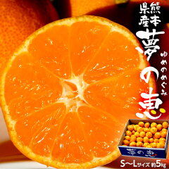 みかんミカン蜜柑柑橘糖度12度以上熊本県夢の恵約5kgSサイズ送料無料常温