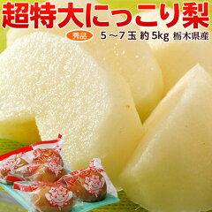 「にっこり梨」秀品超大玉5〜6玉約5キロ1