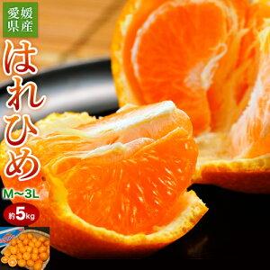 みかん ミカン 蜜柑 オレンジ 柑橘 愛媛県産 はれひめ 約5kg M〜3L 送料無料