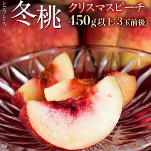 桃 モモ もも クリスマス 12月にお届けする桃 山梨県産『冬桃』 クリスマスピーチ 3玉 約450g 送料無料