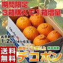【3箱同時購入で1箱増量】デコポン 熊本県産 約1.2kg 4〜6玉 送料無料