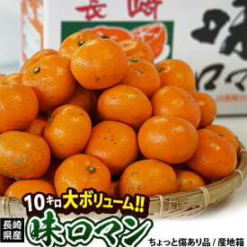 JA長崎せいひ 『味ロマン』 長崎県産柑橘 2S〜Lサイズ 約10kg 産地箱入 ※常温 送料無料