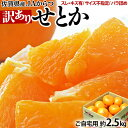 訳あり『せとか』佐賀県産柑橘 約2.5kg スレ傷あり・サイズ不揃い 簡易包装 ※常温 送料無料
