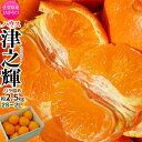JAからつ『津之輝(つのかがやき)』佐賀県産柑橘 2S〜2Lサイズ 風袋込約2.5kg(11〜30玉) 簡易包装 ※常温 送料…