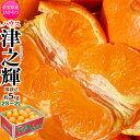 JAからつ『津之輝(つのかがやき)』 佐賀県産 柑橘 2S〜2Lサイズ 風袋込 約5kg(22〜60玉) 産地箱入 ※常温 送料無料