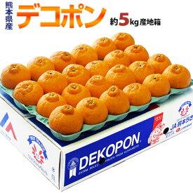 デコポン 糖度13度 熊本県産 柑橘 約5kg 18〜24玉 産地箱入 ※常温 送料無料 みかん デコポン