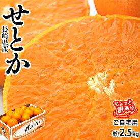 長崎県産 せとか バラ詰 ちょっと傷あり 約2.5kg S〜Lサイズ 1箱の目安15〜22玉程度 産地箱 ※常温 送料無料