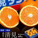 愛媛三崎産 越冬樹熟 清見オレンジ (訳あり) M〜2Lサイズ 約5kg(風袋込み)産地箱 ※常温 送料無料