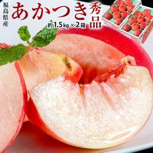 JAふくしま未来 福島県産 伊達の桃 品種限定 『あかつき』 秀品 約1.5kg (6〜9玉) × 2箱 産地箱 ※常温 送料無料