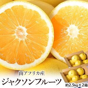 ジャクソンフルーツ 南アフリカ産 約2.5kg×2箱 ※常温 送料無料