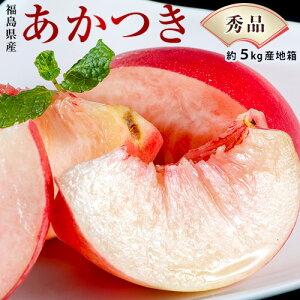 福島県産 『伊達の桃』 品種限定:あかつき 秀品 約5kg (18〜22玉) 産地箱 ※常温 送料無料