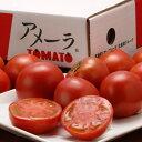 『アメーラトマト』 静岡・長野産 3S〜2L 約900g(7〜23玉入) ☆