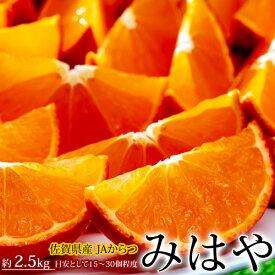 みかん オレンジ 佐賀県産 みはや 約2.5kg サイズ未指定 送料無料
