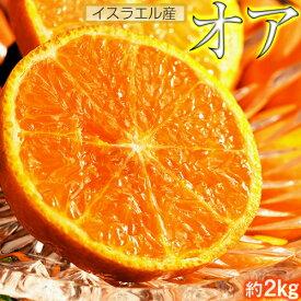 オレンジ『オア』 イスラエル産 約2kg(14〜20玉) 送料無料 ※冷蔵