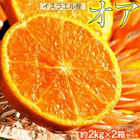【今だけ500円引き!】神秘の柑橘 「オア」 甘くて手で皮を剥ける 約2kg×2箱 1箱当たり:14〜20玉 みかん オレンジ フルーツ 期間限定 高糖度 イスラエル産 送料無料