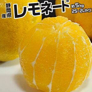 レモン レモネード 静岡県産 約5kg 2S〜2Lサイズ 常温 送料無料