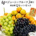 旬のジューシーフルーツ3種+新品種Qなっつ セット 約2.5kg (青森県産スチューベン2房約300g、和歌山県産有田みか…