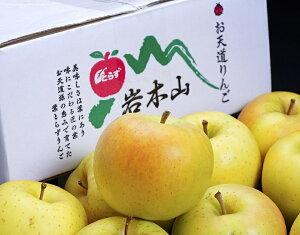 黄色のりんご『トキ』青森県産 風袋込約3kg(7〜12玉入) 岩木山りんご生産出荷組合 産地箱 ※常温 送料無料