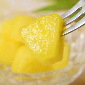 冷凍パイン カット 500g×2袋 計 1kg 冷凍 パイナップル パインアップル [冷凍同梱可能] 冷凍フルーツ 冷凍果実 ジュース スムージー