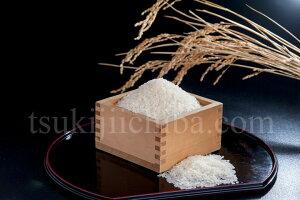 お米 10kg 送料無料 新潟県産米「新之助」白米10kg(5kg×2袋) おこめ 米 白米 ご飯 ※産地直送 ○