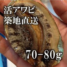 高級活アワビ 70-80g 5個 海鮮 バーベキュー 韓国産 中サイズ 豊洲直送 あわび 海鮮 BBQ【アワビ70-80gx5個】冷蔵