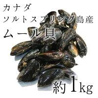 カナダ産ムール貝