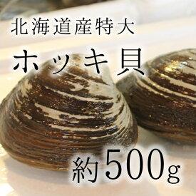 活けホッキ貝 北海道産 約500g/個 豊洲直送 高級貝類 北寄貝 ウバガイ【ホッキ貝500g】 冷蔵