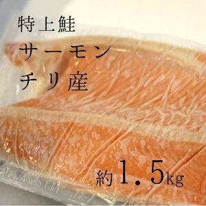 特上鮭 サーモンフィレ チリ産 チリ銀 約1.5キロ 味も脂もバッチリ!【チリ銀1.5K】 冷凍